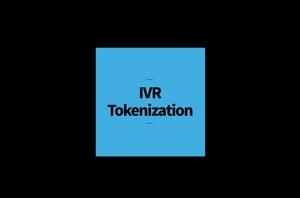 ivr tokenization